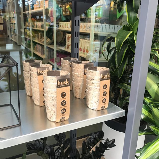 Stock on shelves @the_rhs brand new #rhswisley welcome center #wisley shop and cafe !  We are over the moon to see people buying husk !! Get yourselves down to Wisley for a great day out .  #garden #gardening #gardendesign #indoorplants #indoorplantsdecor #indoorplantstyling #ecofriendly #noplastic #plasticfree #planters #plants #plantpots #alpines #suculentas #succulents #cactus #cacti #recycle #biodegradable #productdesign #nowasteliving