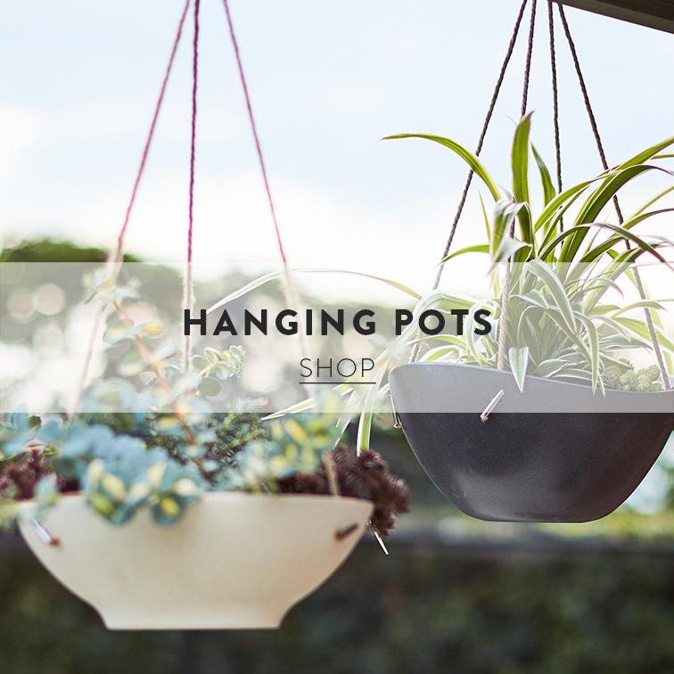 HANGINGPOTS3.jpg