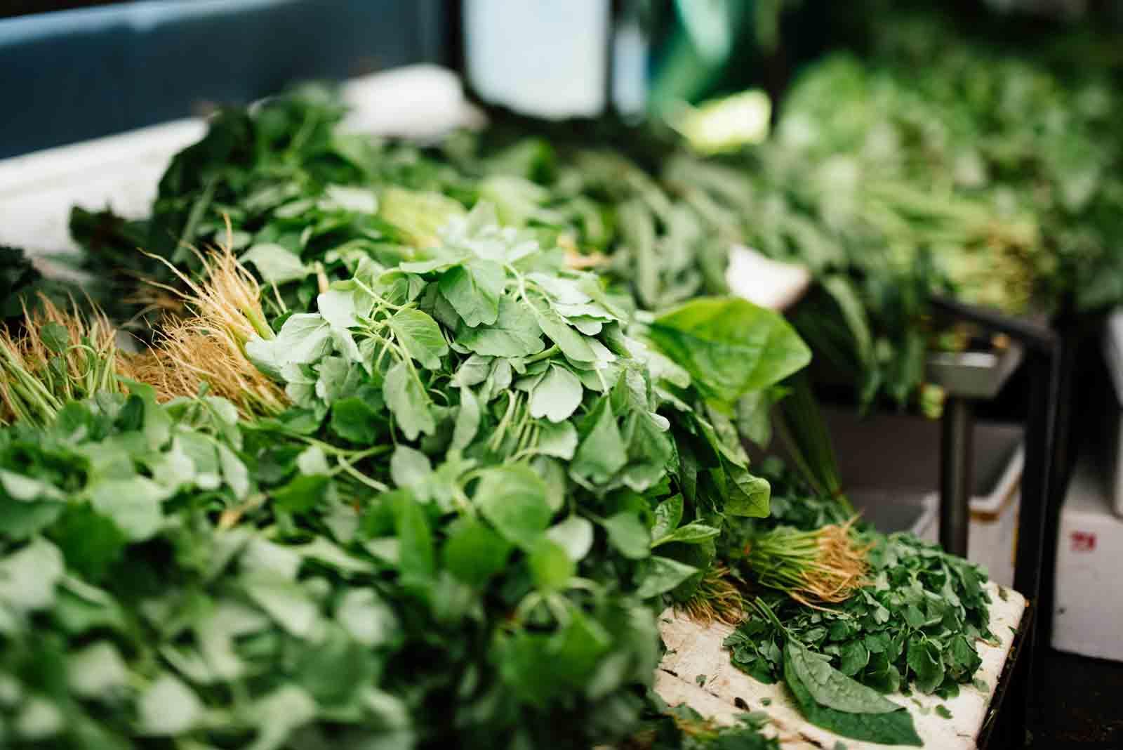 The Lore Fresh Watercress and Arugula Salad Recipe