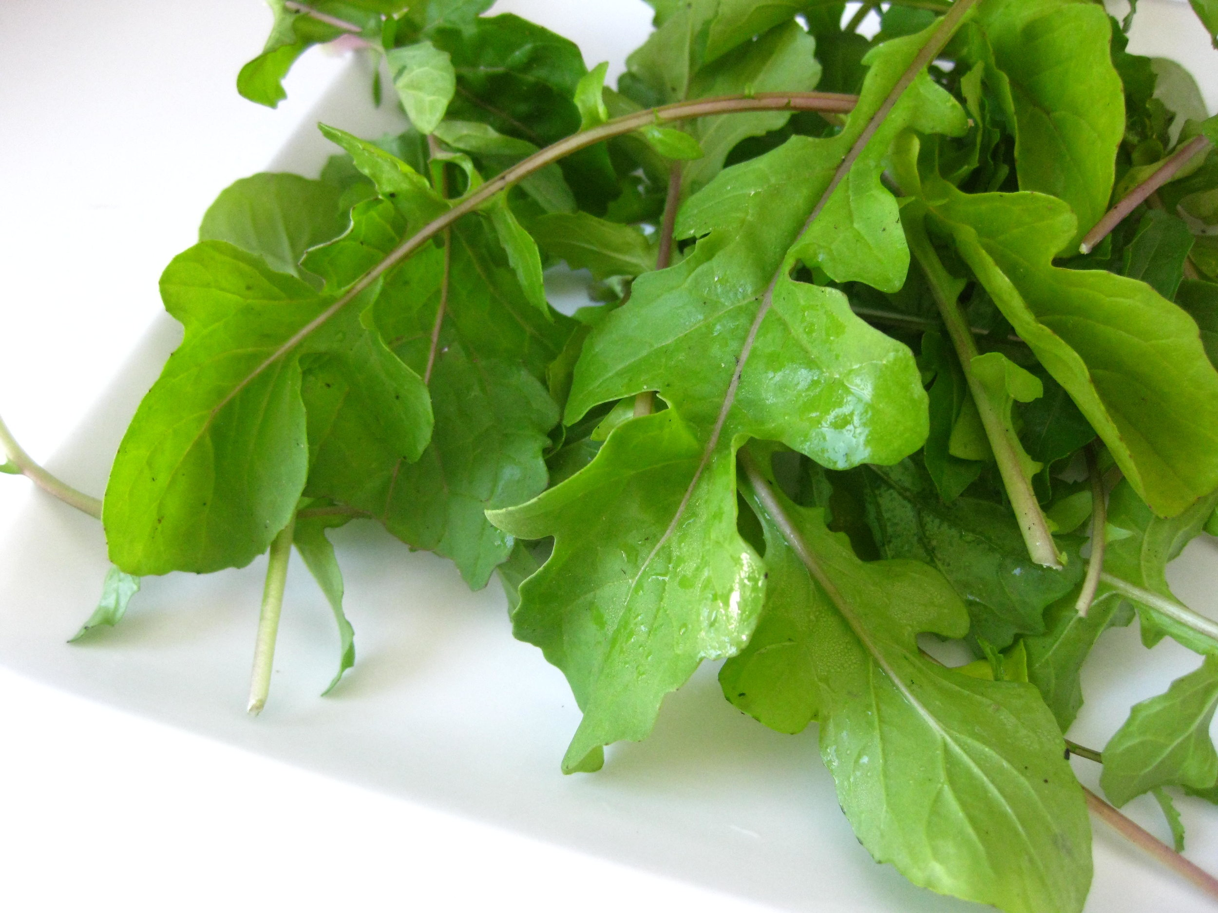 Did you know… - The fresher the ingredients are, especially in greens and produce, the more nutritious they are.