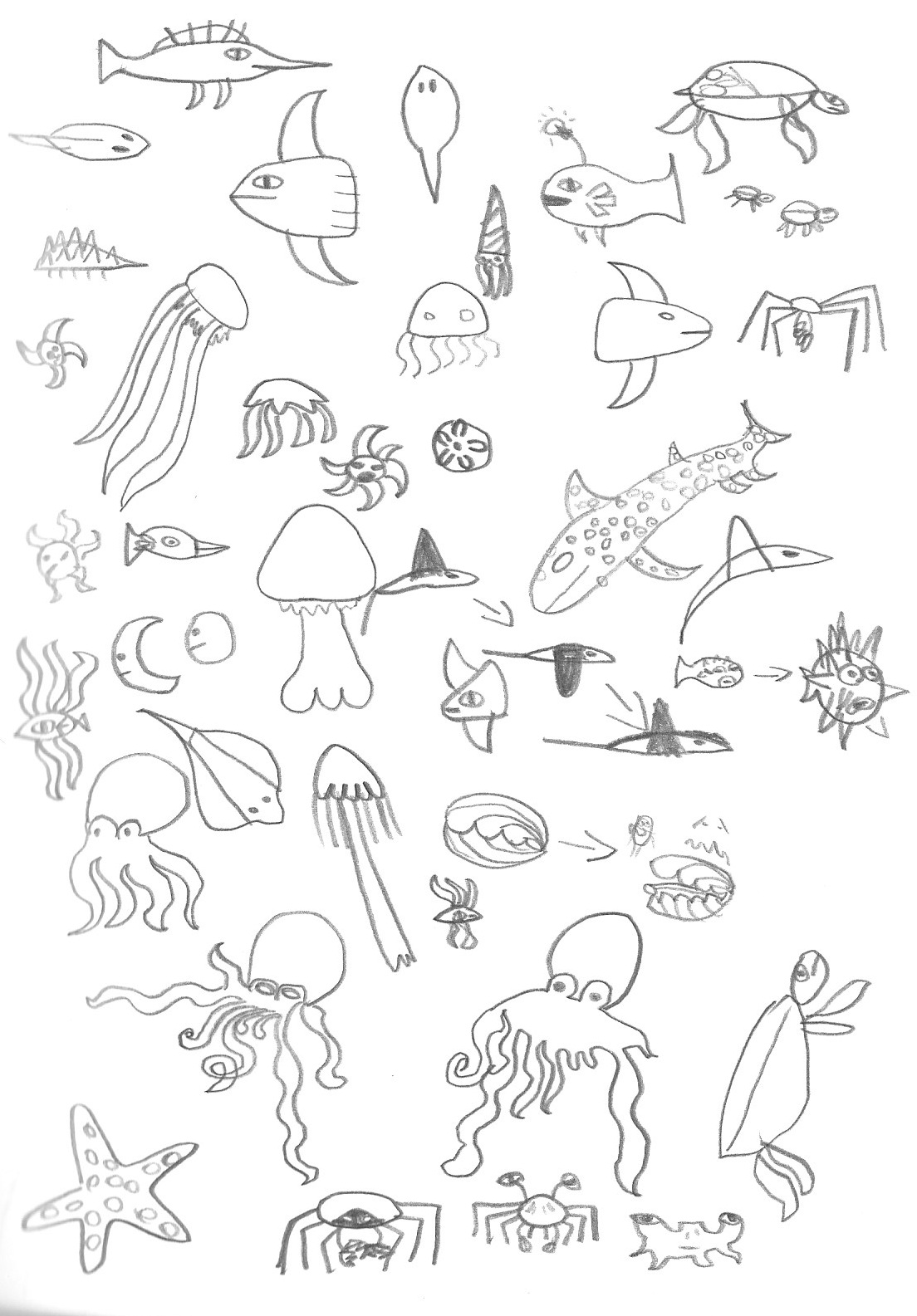 Sea-Creatures.png