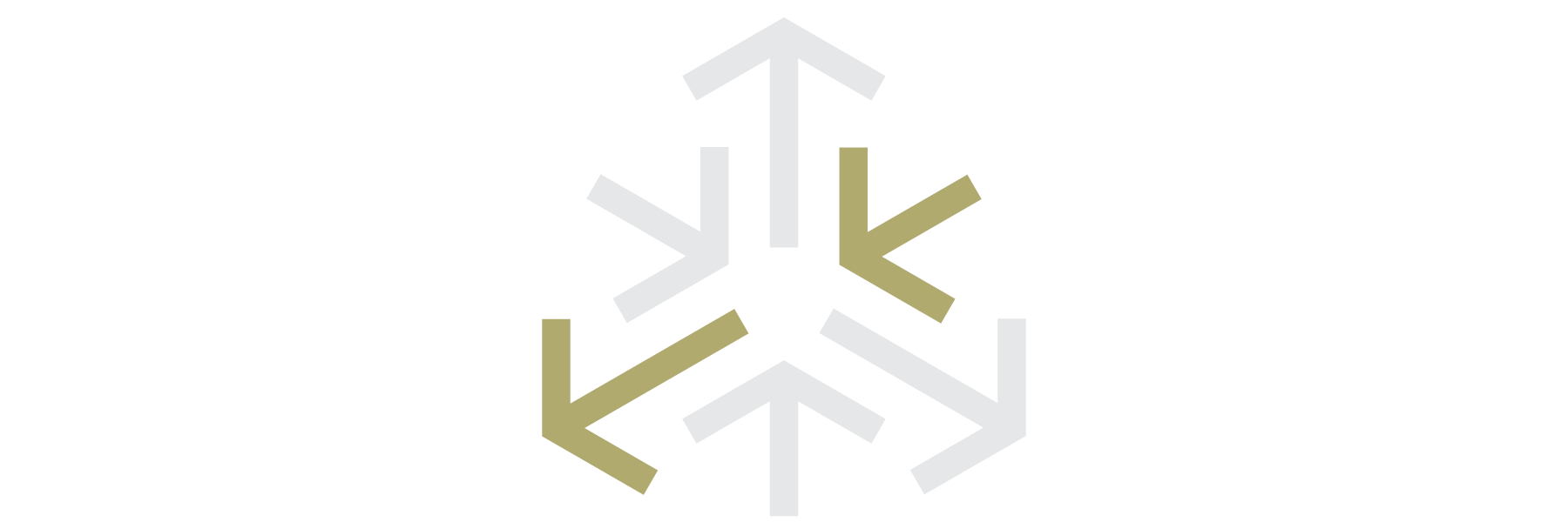 DiscipleMaker_Icon_Church_Wide.png