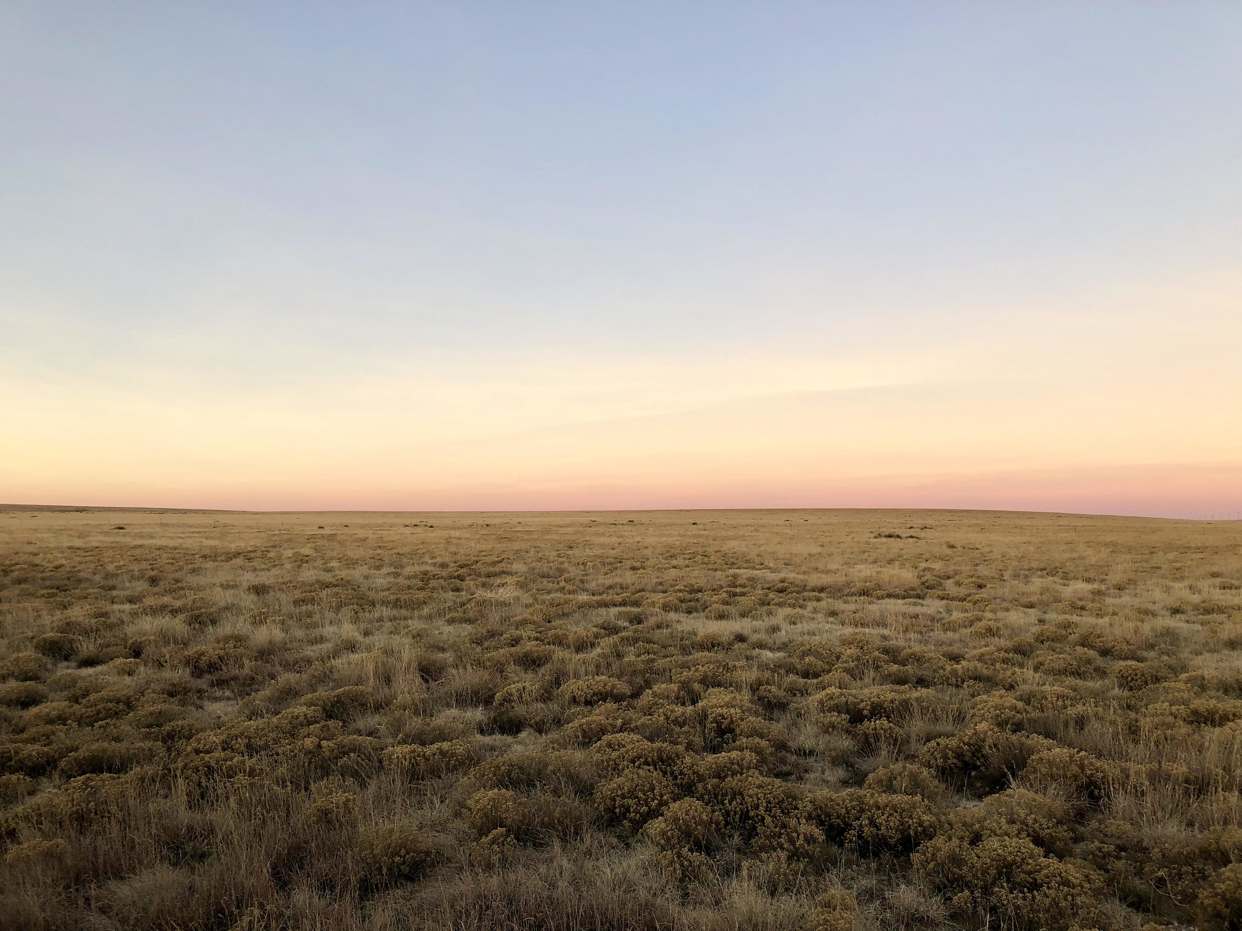 grasslandsunrise.jpg