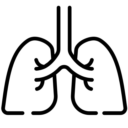 choose the lungs plan