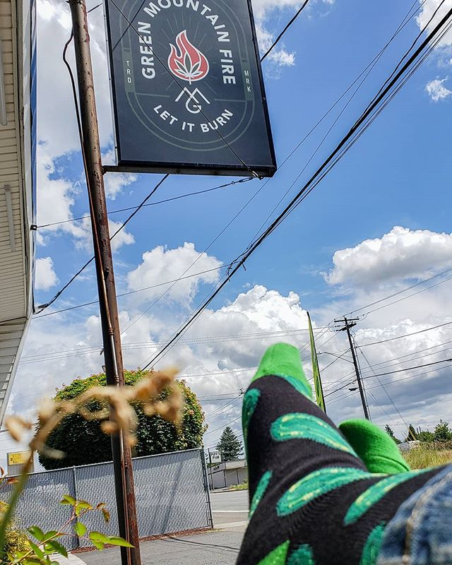 #picklesocks #sunnyday #lunchbreak @greenbitscom