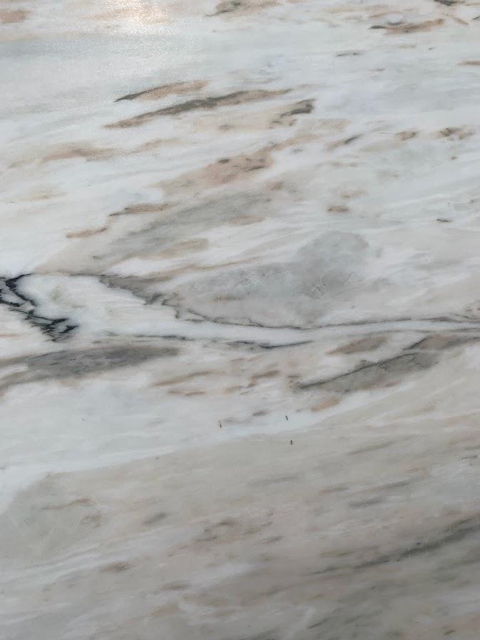 Calcatta Glacier4.jpg