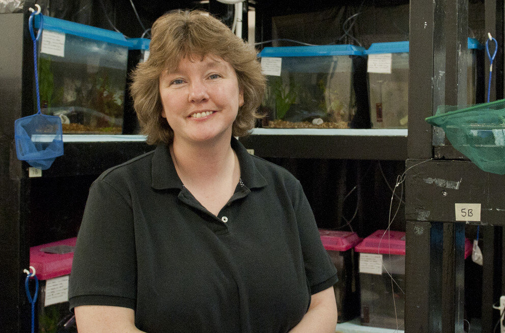 Victoria Braithwaite, Researcher Who Said Fish Feel Pain, Dies at 52 - In two papers and a book, Dr. Braithwaite made the case that fish react to unpleasant stimuli and argued that they be treated humanely.