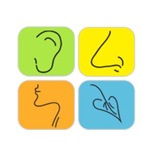 Pinon Hills Ear, Nose & Throat 2300 E 30th St # D-102, Farmington, NM 87401 505.327.4429   http://www.phent.net/