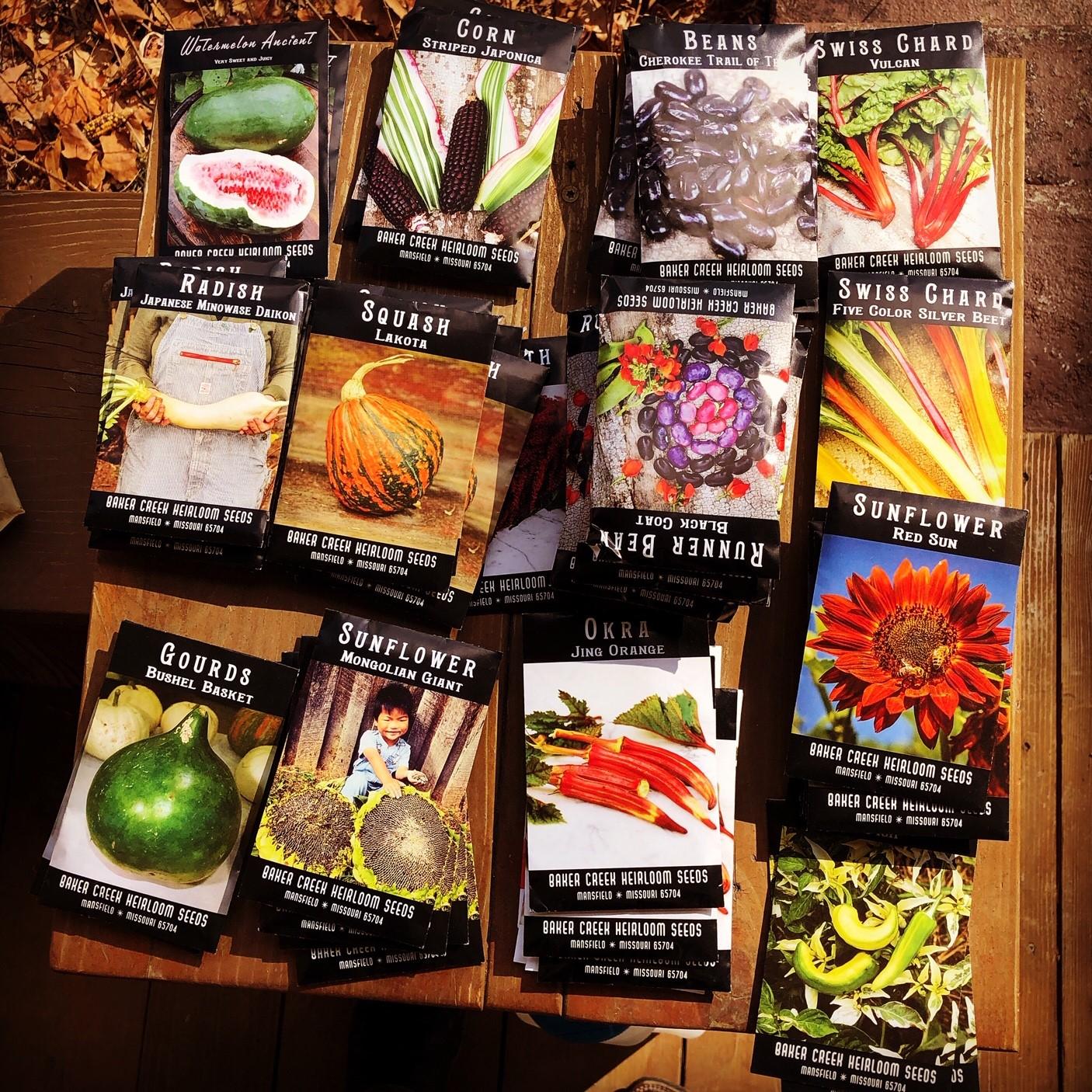 seed packets.jpg