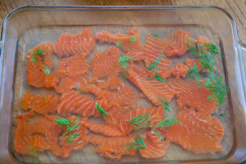 Swedish-Gravlax-Fermented-Salmon-Wild-Caught-Salmon-What-To-Do-With-Salmon-GAPS-Legal-Salmon-Recipe-GAPS-Diet-Salmon-Fish-On-GAPS-GAPS-Diet-Snack
