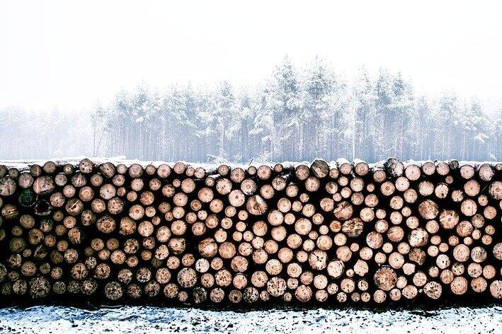 lumber-1246545_960_720.jpg