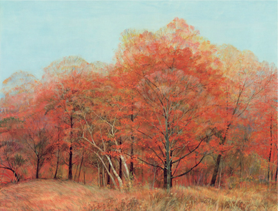"Red Maples - Large Unframed: 22 x 28"", $360Large Framed: 28 x 33.5"", $650Small Unframed: 14 x 18"", $124Small Framed: 18 x 22"", $230"