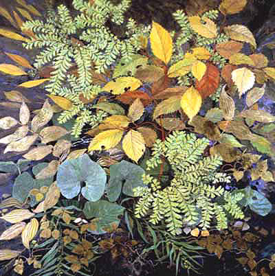 "Maidenhair Ferns - Large Unframed: 29 x 21"", $354Large Framed: 38 x 30.5"", $745Small Unframed: 18 x 13"", $195Small Framed: 26 x 21"", $395"