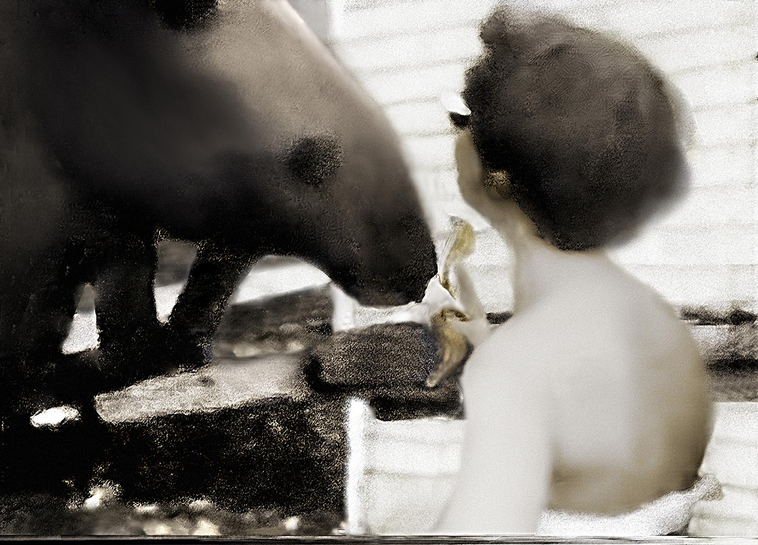 18.Horse and Banana.jpg