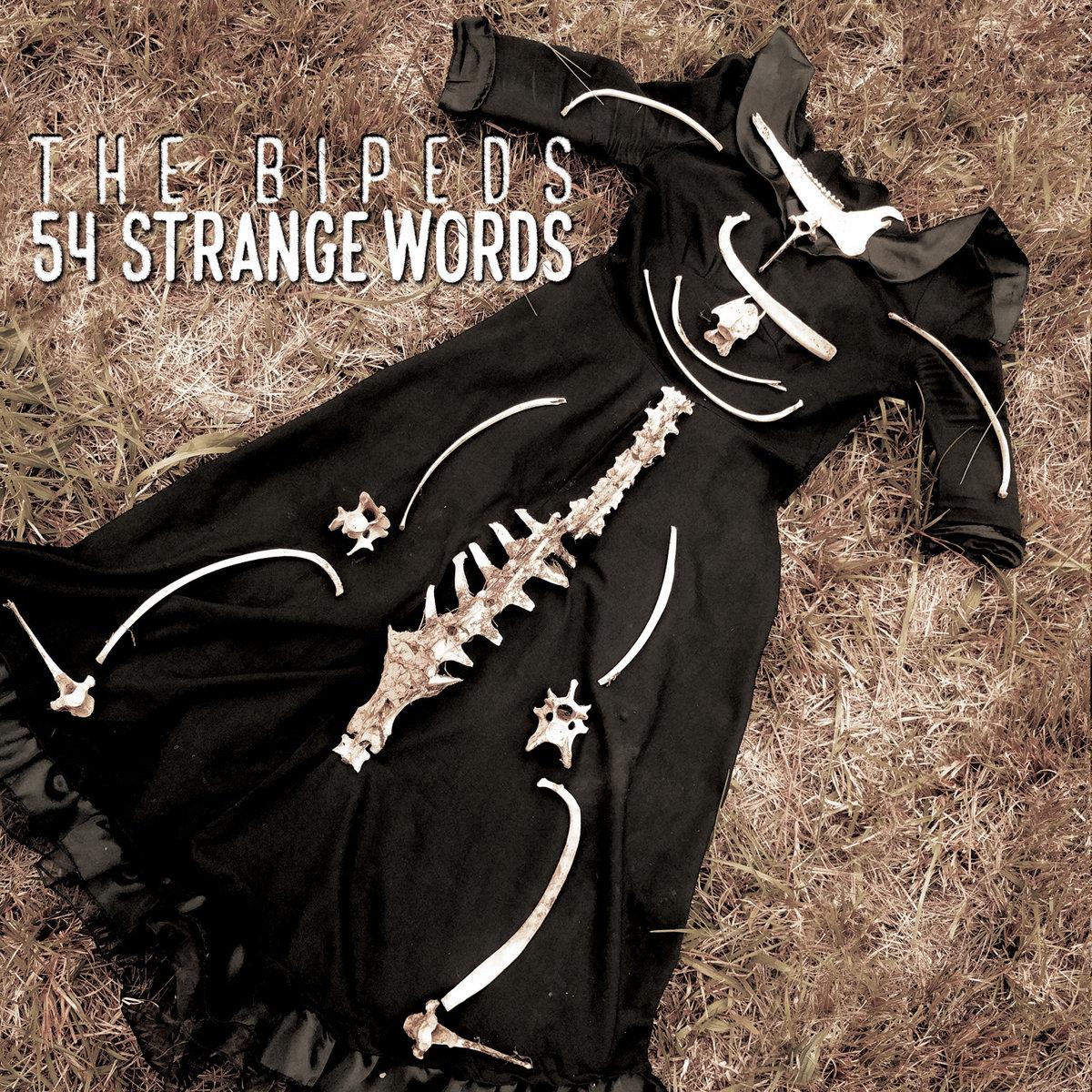 54 Strange Words (CD) $10 + shipping - 8 song album on hi-fidelity CD