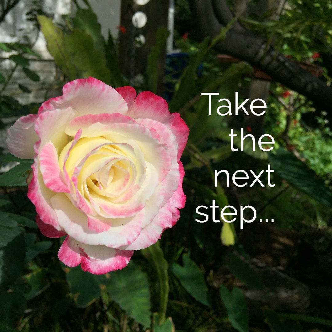 Take Action - Ready to take the next step? You can book a consultation with Sylvia, join a seminar, participate in an online course, or even become a qualified facilitator in the Heart Leaders Academy Training. Individual mentoring with Sylvia is highly sought after.