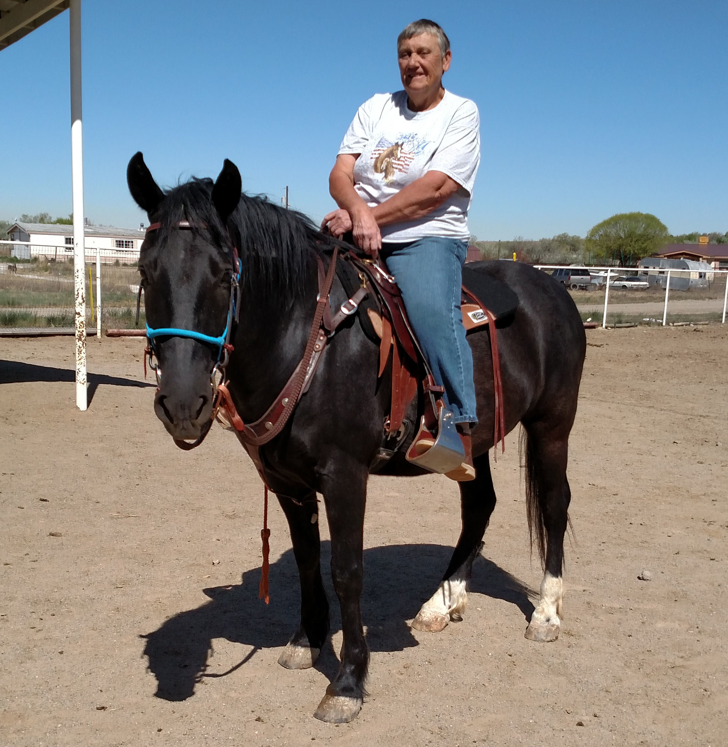 Carson - Carson was adopted as a 6-month-old stallion from the Jicarilla herb by Barbara Kiipper. He is the mustang that inspired the creation of JMHA, and because of him, 55 horses have been adopted and trained using humane horsemanship practices. He is now 10-years-old and going strong.
