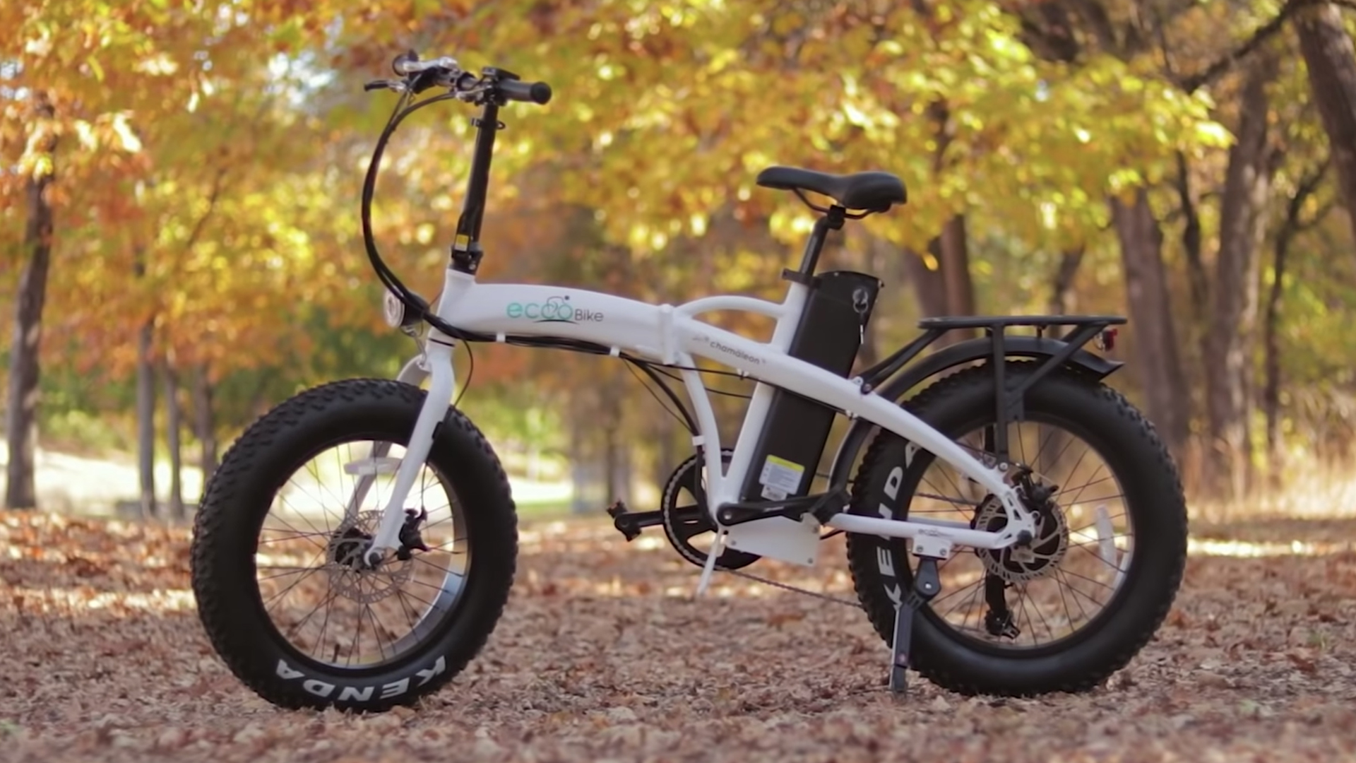 electrified-reviews-eccobike-chamaleon-folding-fat-tire-electric-bike-review-profile.jpg