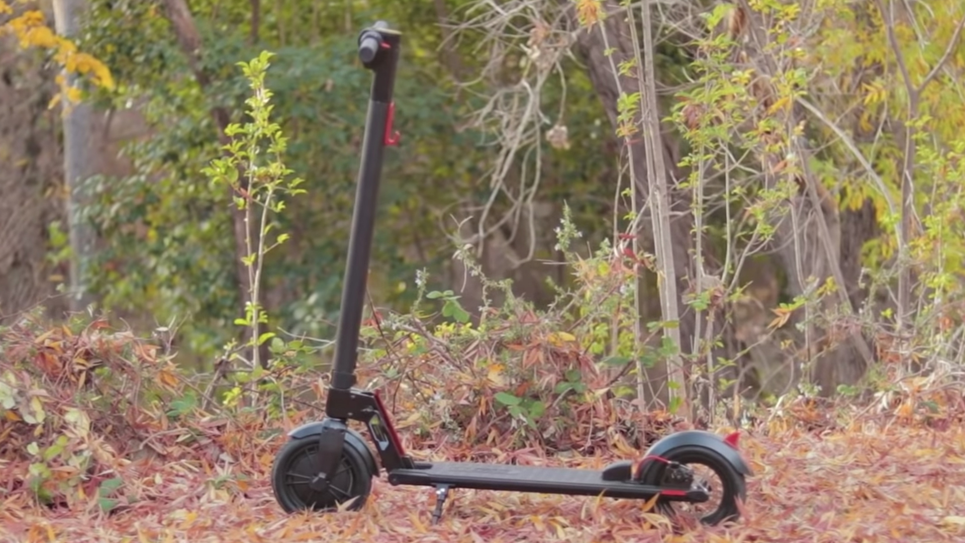 electrified-reviews-gotrax-gxl-folding-electric-scooter-review-profile.jpg