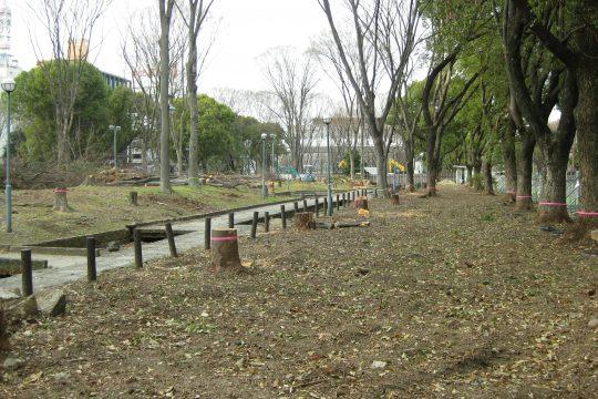 Central-park-one-540x360.jpg