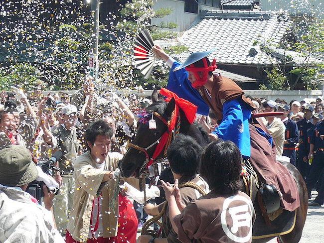 Tado Festival Celebrate.jpg