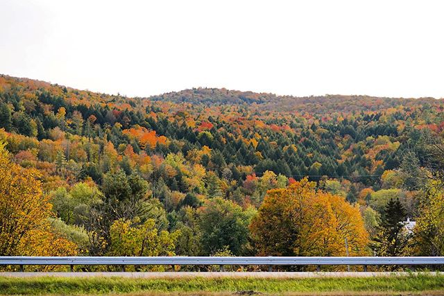 Traded in I-83 traffic for these views and I feel pretty good about it.  _______________________ #vermont #fallfoliage #vtlife #vermontlife #fall #folliage #forest #fallcolors #vermonttravel #fallphotos #fallphotography