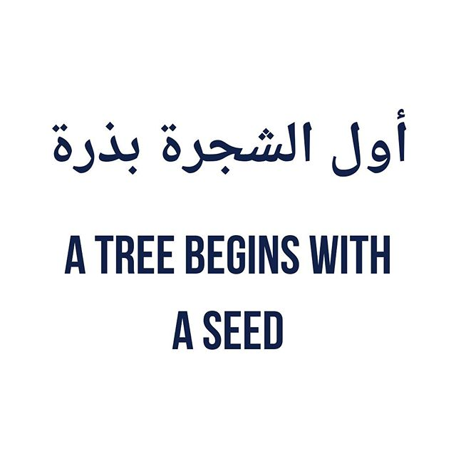 """Entrepreneurship is difficult, but as this Arabic proverb says """"a tree begins with a seed"""". Taking a passion for food and trying to use it as a driving force to challenge and change perceptions of the Middle East. Ambitious, but why not aim high?  We knew it wasn't going to be easy to start a new business. New world, new challenges. So far, it's been equally exciting and scary, with the odd measure of """"what should we be doing now"""" moments. But we're learning that everyone has to start 'somewhere', hence today's quote. Wave goodbye to that little voice that says 'play it safe and don't dream big'. And replace it with 'I have no limits'. . . . #arabicquotes #qotd #proverbs #sayingsandquotes #seed #entrepreneursofinstagram #womenwhohustle #passionate #dreamers #motivationquotes #selfgrowth #businessowners"""