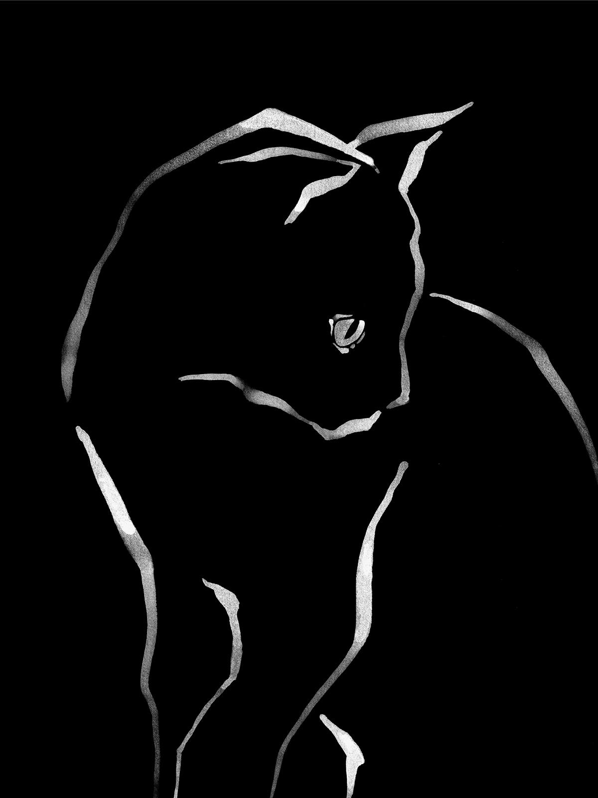 FINAL CAT 4.jpg