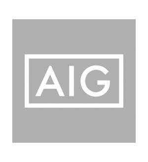 logo_AIG.png