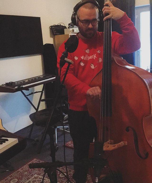 Double bass (double the fun)🌝