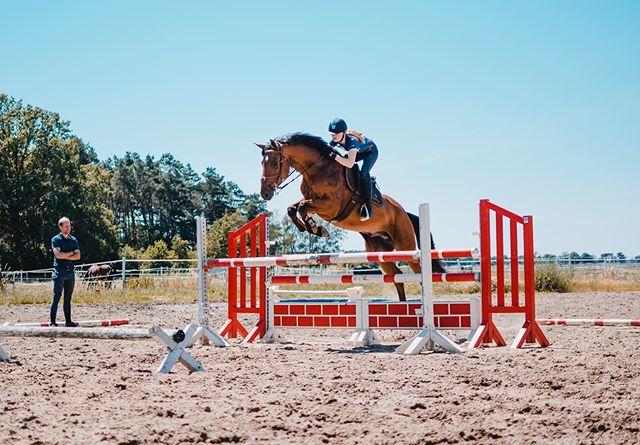 flying high 🛫 //@hoingcharlotte // @lotti_und_ihre_pferde