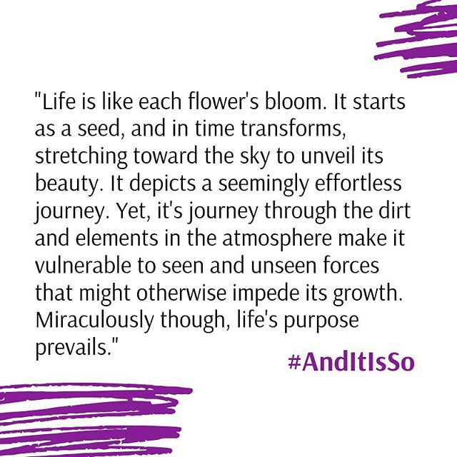 Life's purpose will always prevail. An expert from #AndItIsSo #powerofhispromise #survivor #breastcancerawareness #life #empowerment  #womxn #selfcare #motherslove