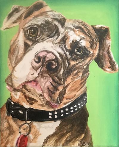pit-bull-portrait-green.jpg