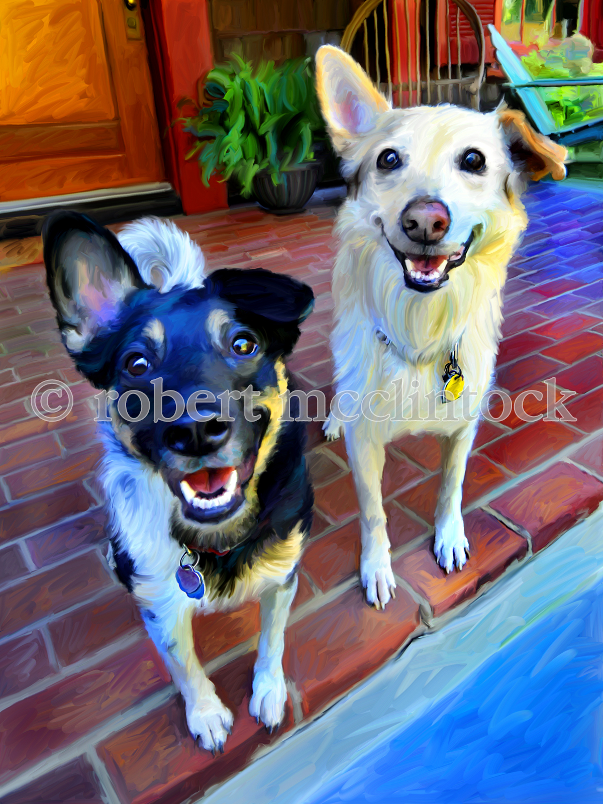 ciaverelli-dogs-1448v5.jpg