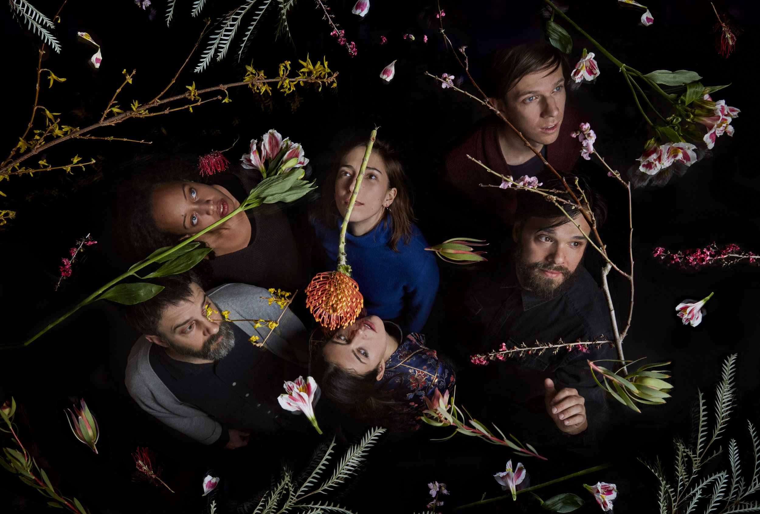Dirty-Projectors-CreditJasonFrankRothenberg.jpg