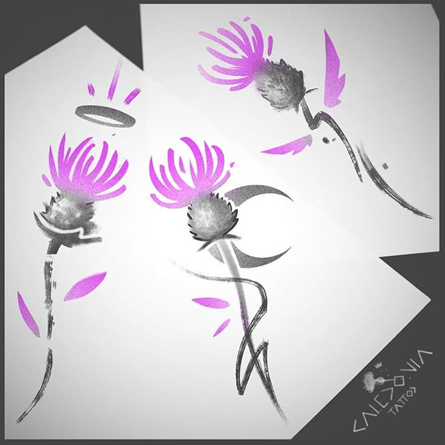 """""""Thistles""""  New flash! Available in colour, or black and grey.  For any tattoo enquiry, please contact me directly on my new website: www.caledoniatattoo.com  Link in bio."""