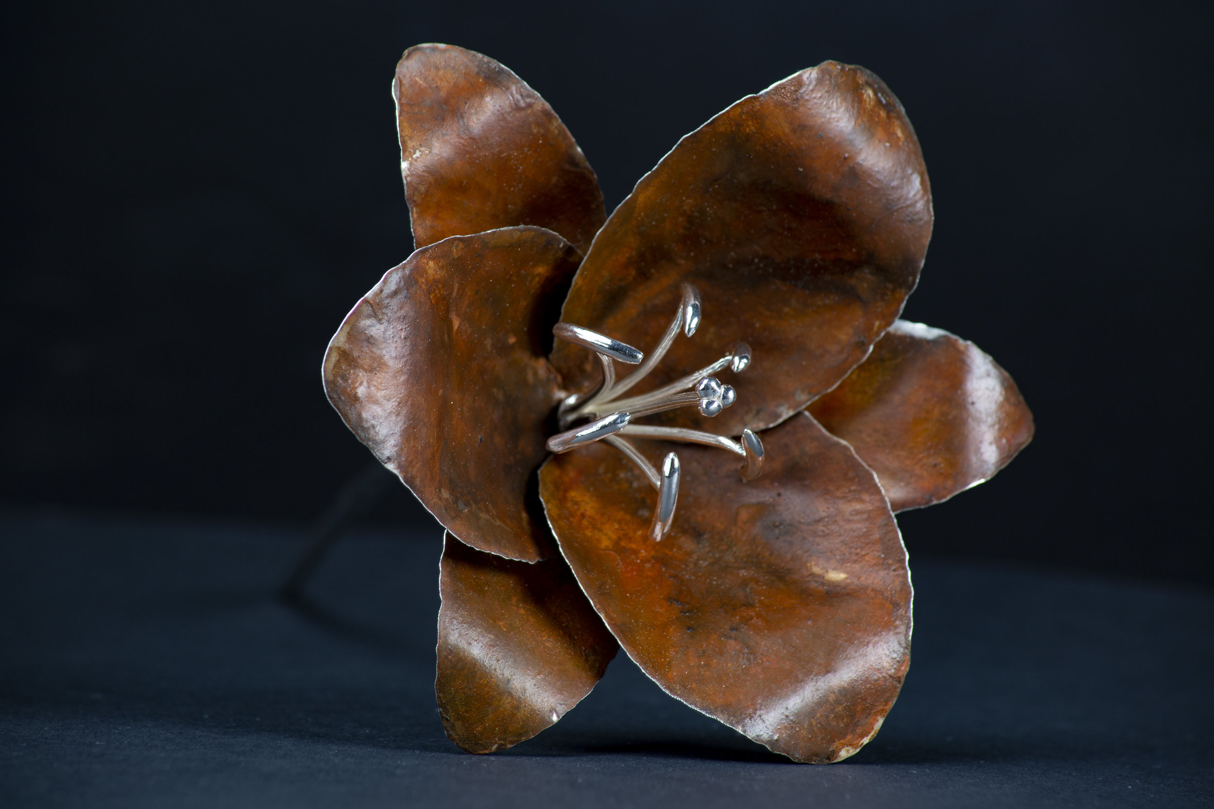 Orange Patinated Silver Lily