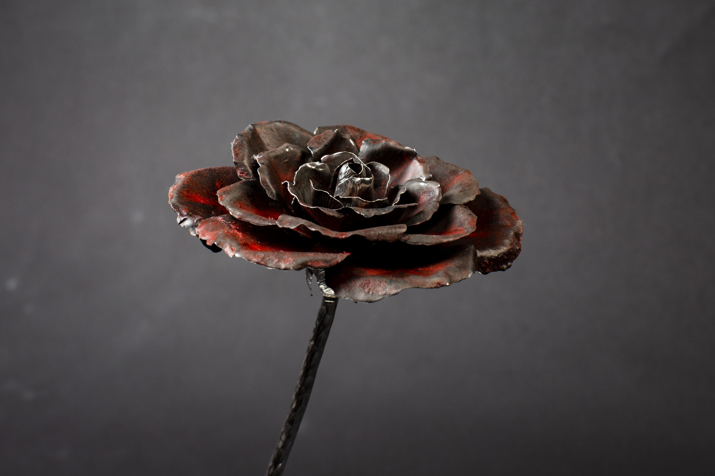 Red Patinated Silver Rose