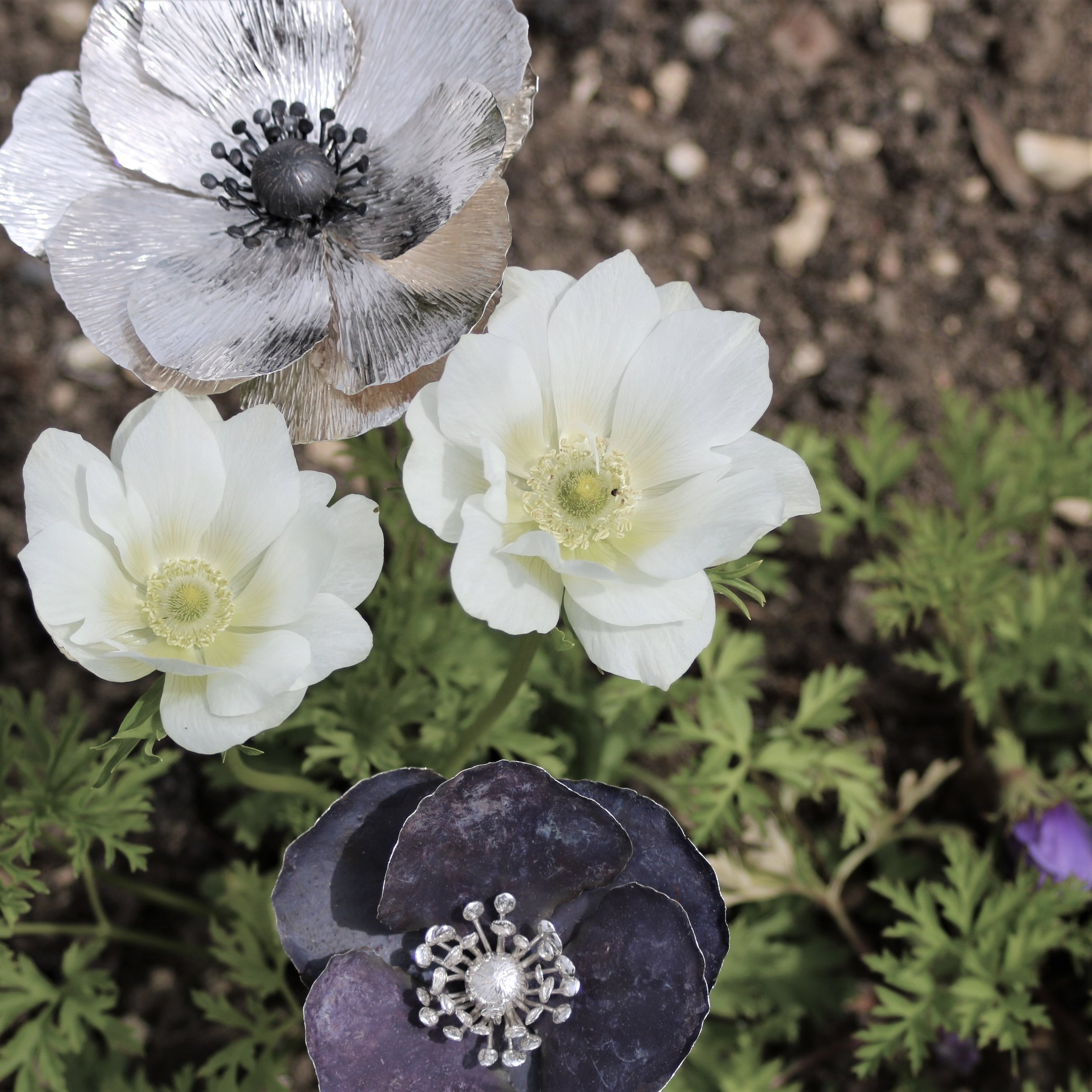 Silver and Purple Patinated Silver Anemones
