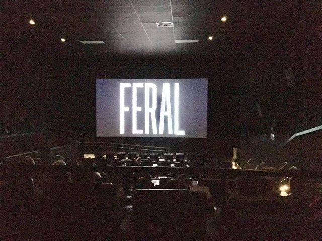 First screening at @mysff! Thank you to everyone who came and supported the film!!! . . . . . #sarasota #sarasotafilmfestival #2019 #indiefilm #newyork #underground #tunnels #freedomtunnels #worldpremiere #film #filmmaking #feral #darkdays #blizzard #actor #moondog #cinema #graffiti #streetart #walls #tunnels #nyc #filmfestival #producer #director #independentfilm #mysff #bathroom #ladyjays #cinematography #film