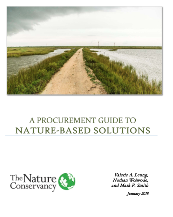 2019 The Nature Conservancy NJ - A Procurement Guide to Nature-Based Solutions