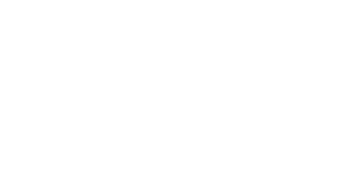 Ford+White.png