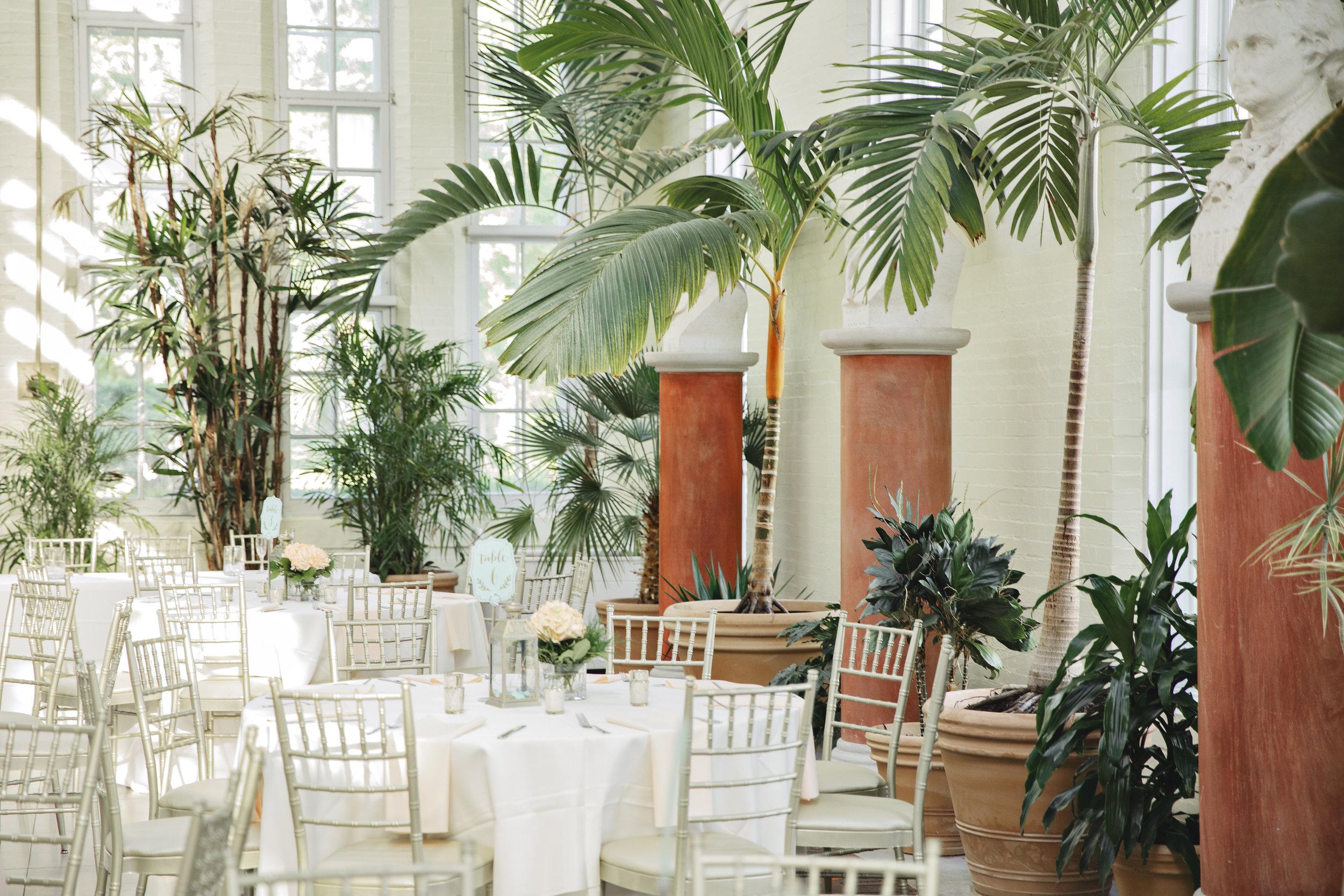 Elopement, wedding, and Portrait Photographer -