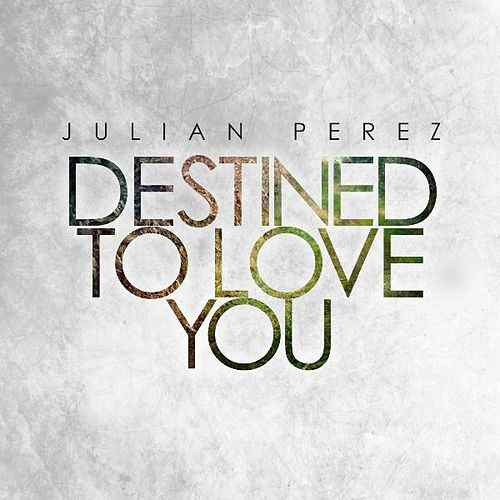 Destined_To_Love_You_Official_Cover.jpg