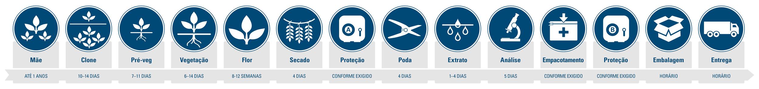 Tilray_Process-Diagram_Portugese_V1.png