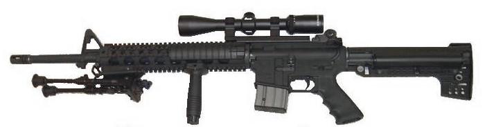 Gun used in Parkland massacre. ( Wikipedia )