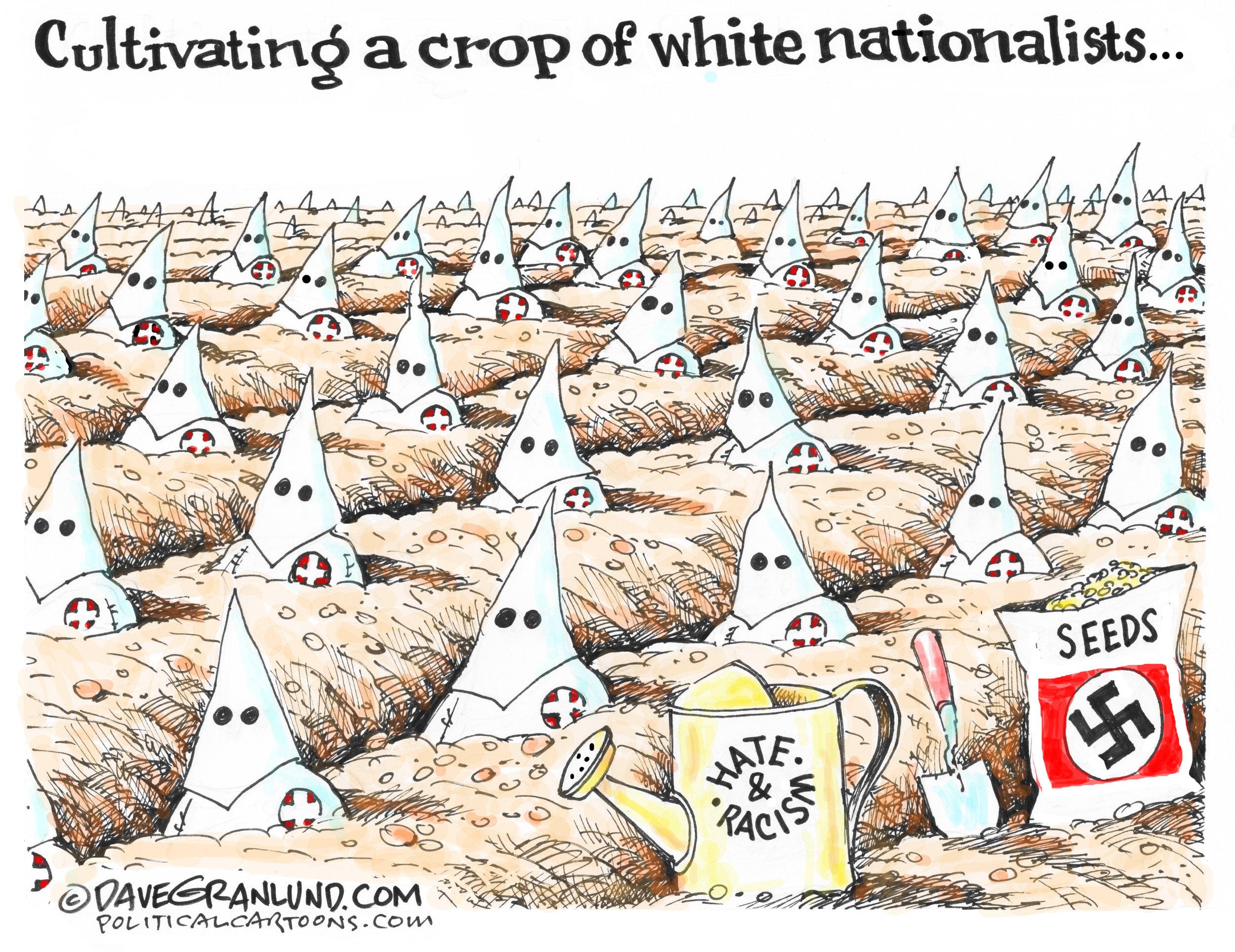 Crop of white nationalists ( Dave Granlund , PoliticalCartoons.com)