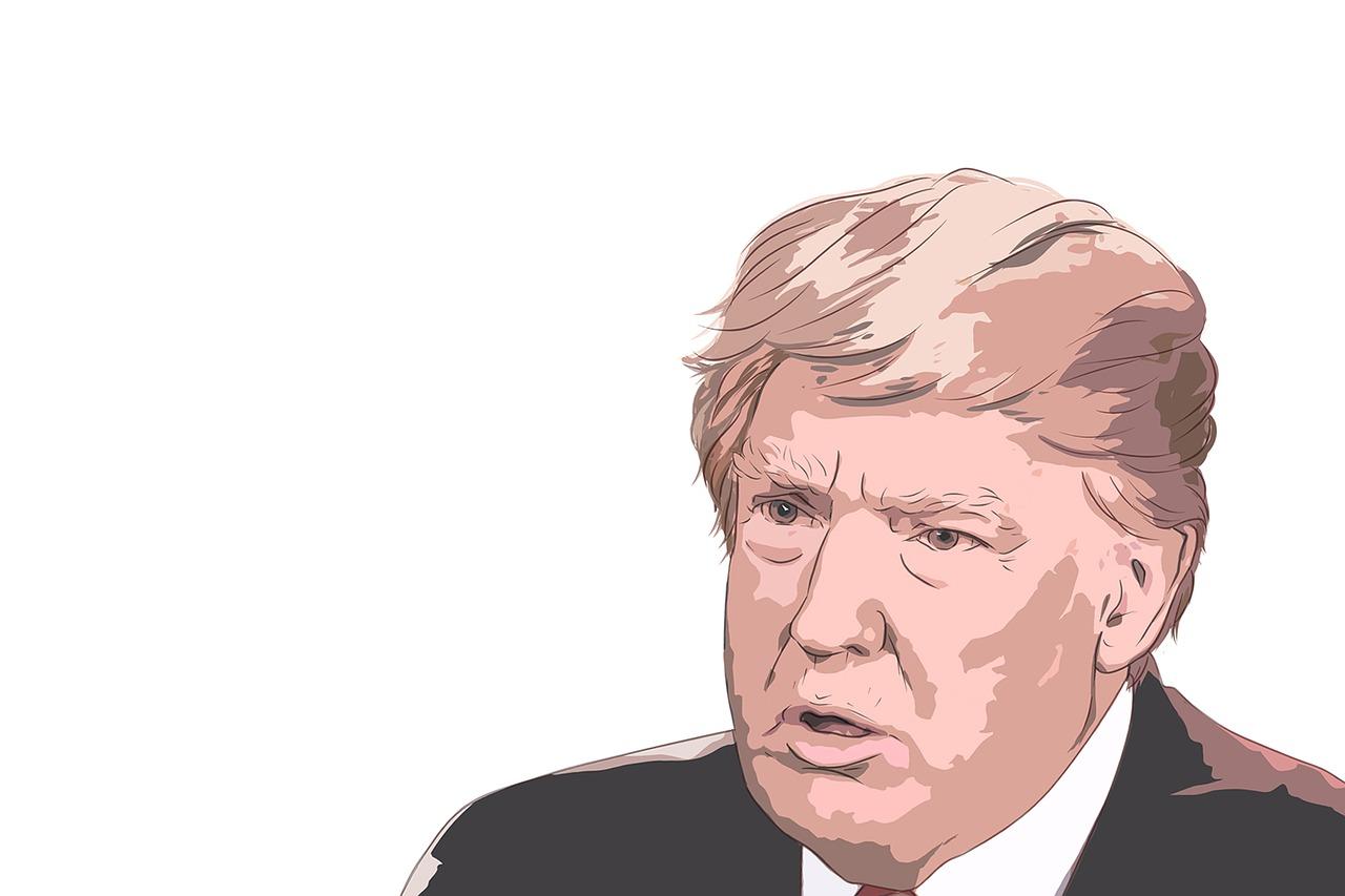 Donald Trump ( Owantana )