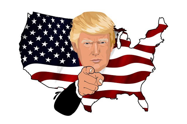 Trump U.S.A ( Gerd Altmann )