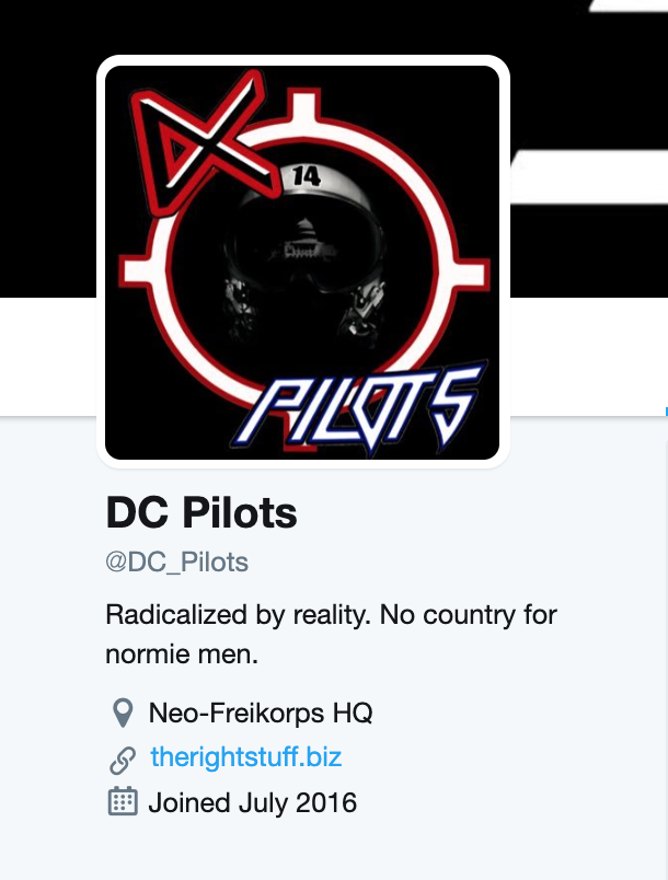 """The DC_Pilots Twitter bio shows the same """"radicalized by reality"""" line featured on accounts linked to Gebert."""